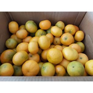 Box 10kg Organic Clemenules