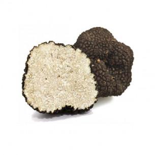 Summer Truffles (Tuber Aestivum) fresh