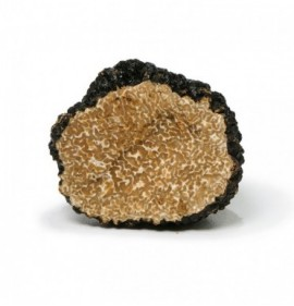 Black autumn truffle, fresh (tuber uncinatum)